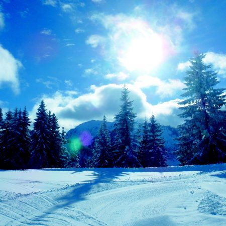 Sneeuw / winter